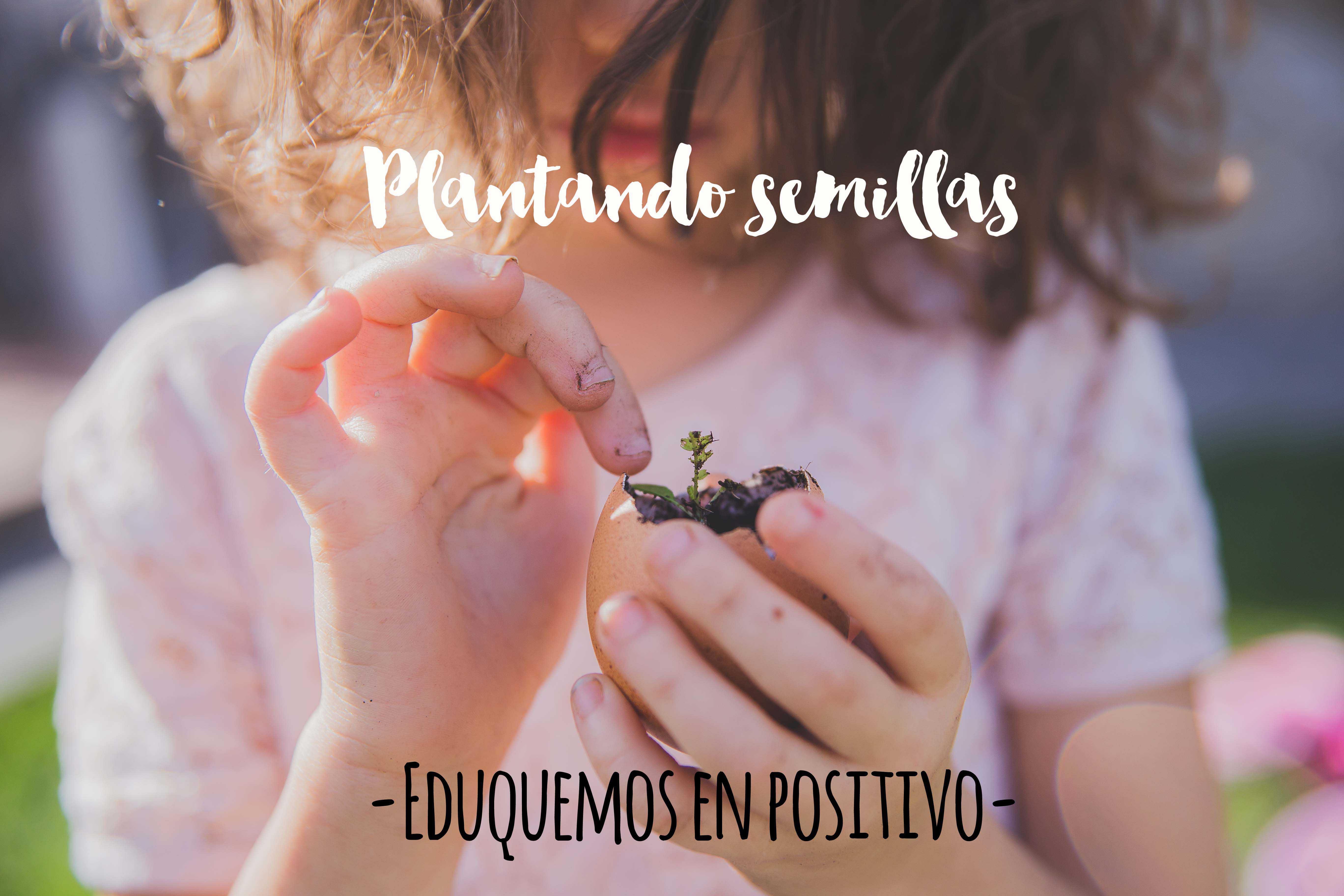 Sembrando semillas DP